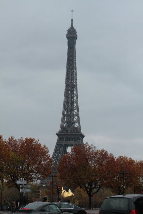 Paris. Photo by Daphne Wu, http://www.daphnewu.com