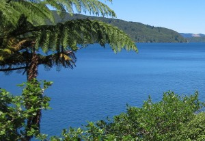 The beautiful blues of the Queen Charlotte.