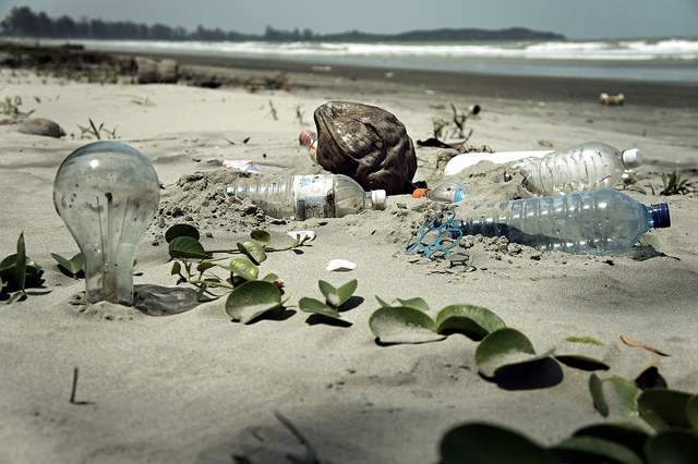 garbage, beach, pollution, trash, environment, green