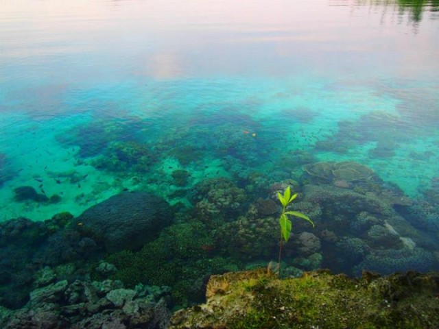 life-Solomon-Islands