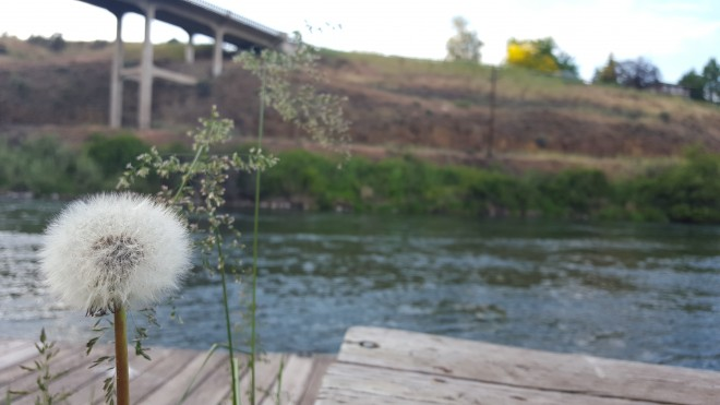 The Deschutes River in Oregon. Photo by Beth Santos of Wanderful.