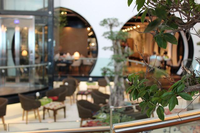 Turkish tea garden at Turkish Airlines Lounge in Istanbul