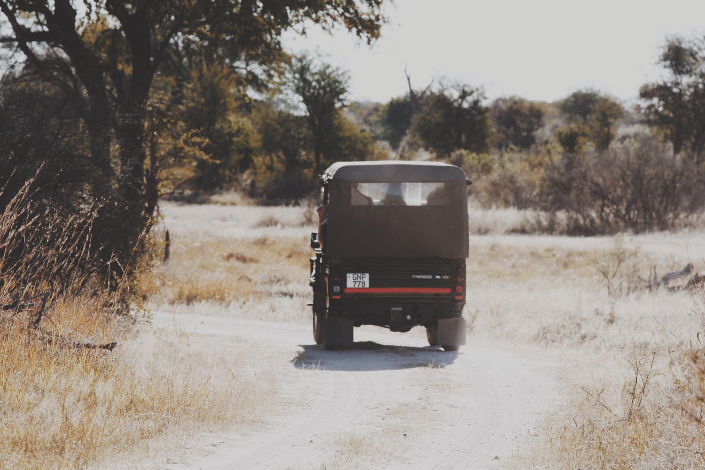 safari bucket list travel wanderful