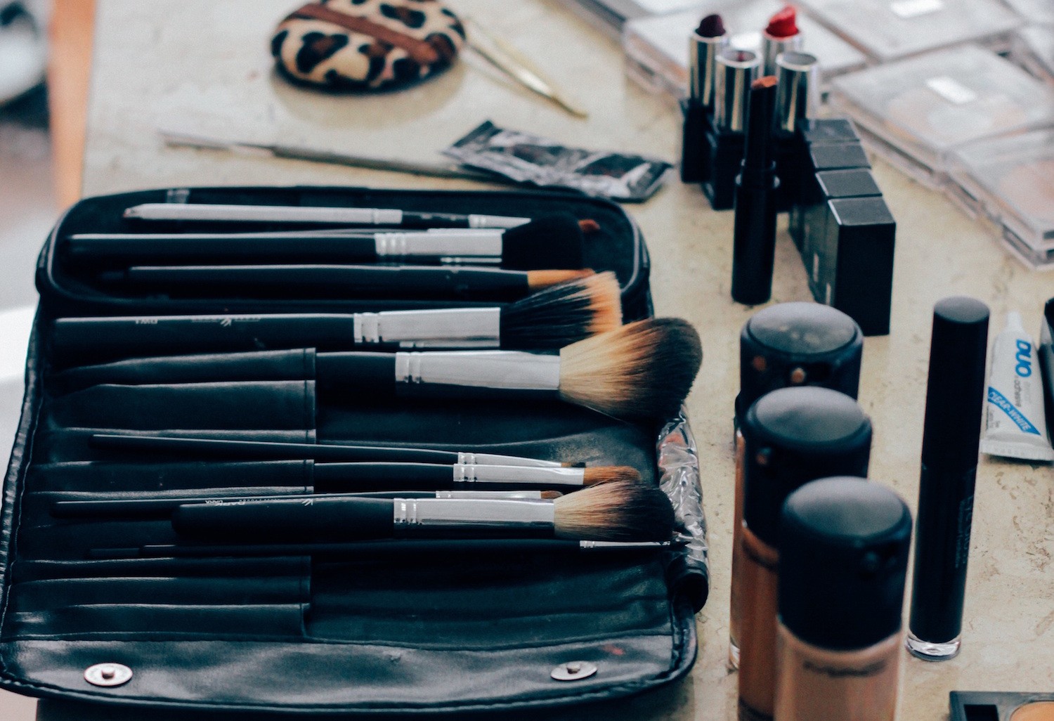 Makeup bag with brushes