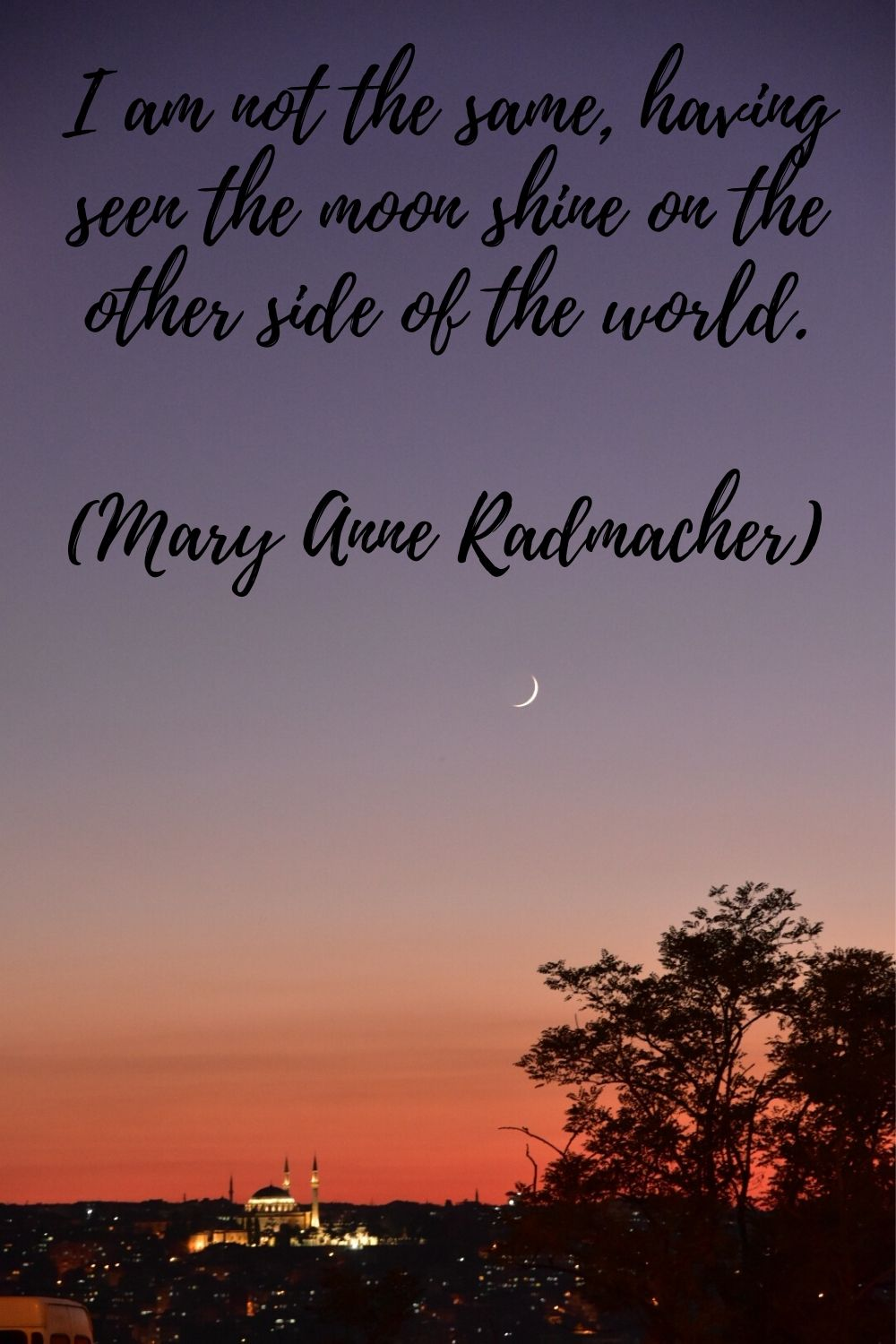 I am not the same, having seen the moon shine on the other side of the world. Mary Anne Radmacher travel quotes