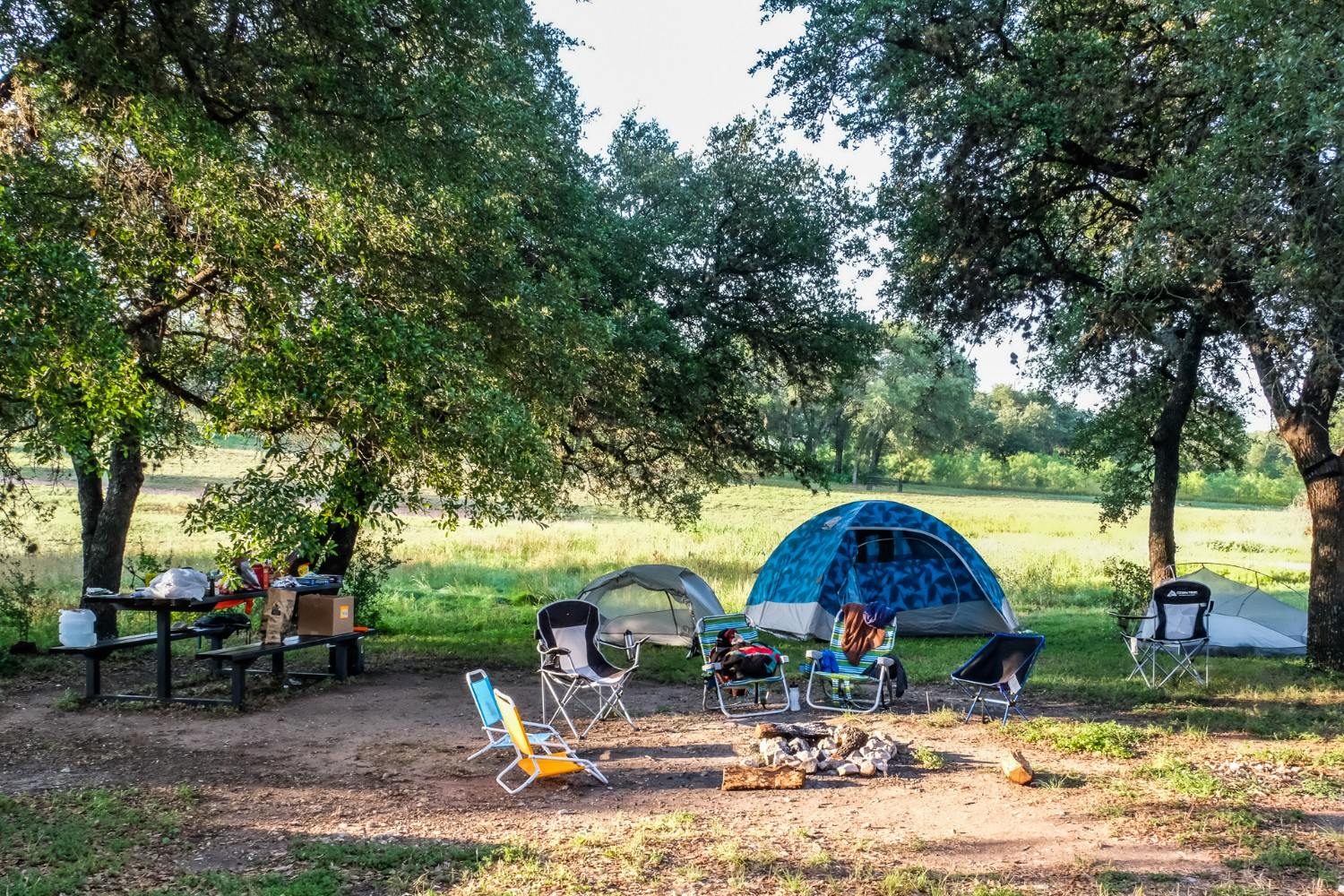 Camping tent set up in a park
