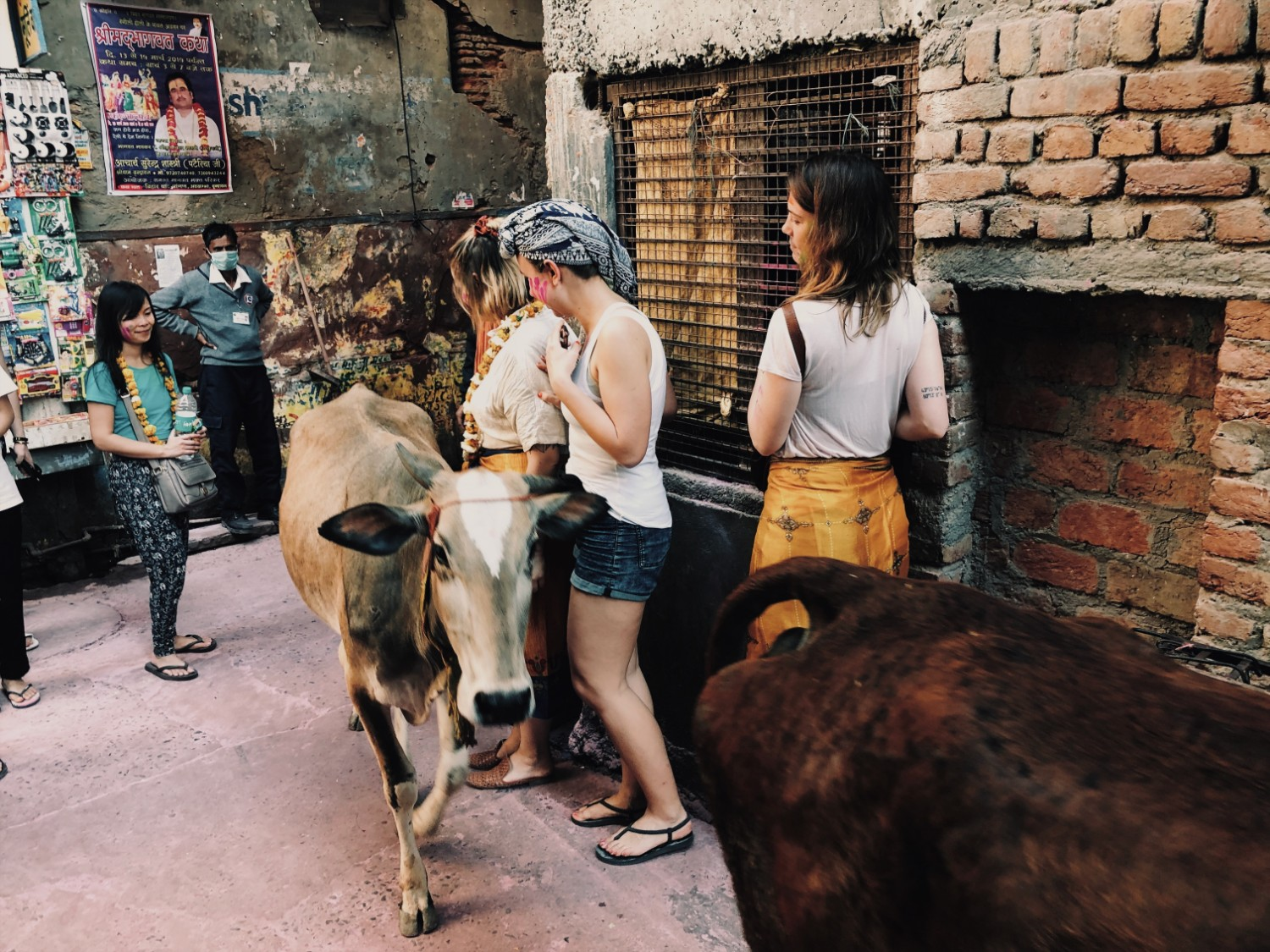 Women standing with a cow on an Origin Travels tour in India for Holi
