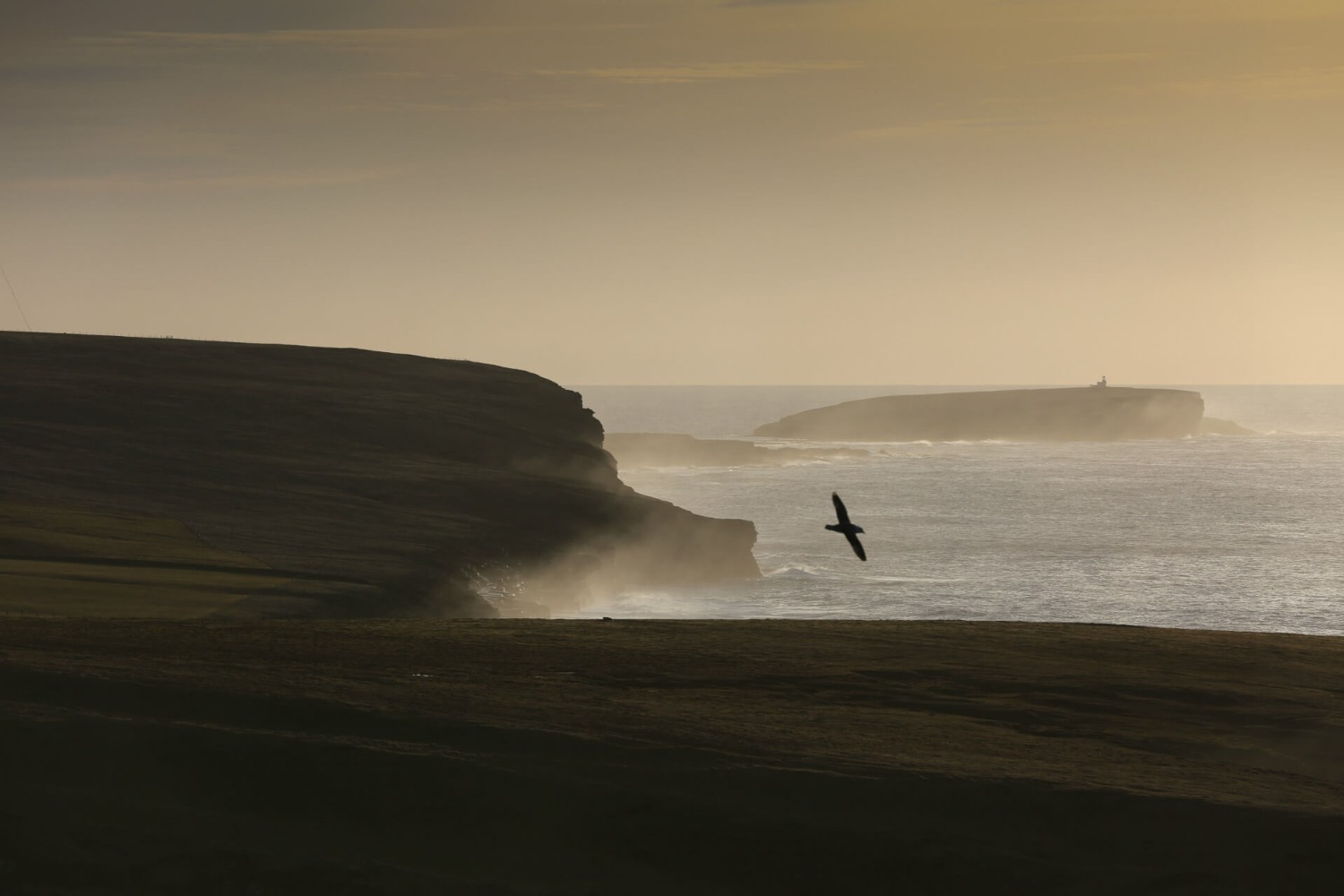 Coastal view from Orkney at dusk
