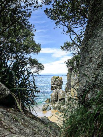 View through the trees to the beach in New Zealand - photo by Larissa Rolley, photography course creator at Wanderful