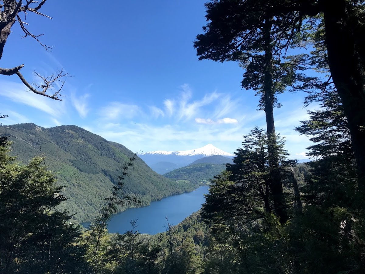 A bright blue sky and view of a lake below surrounded by lush green mountains, from the Huerquehue National Park Loop in Chile
