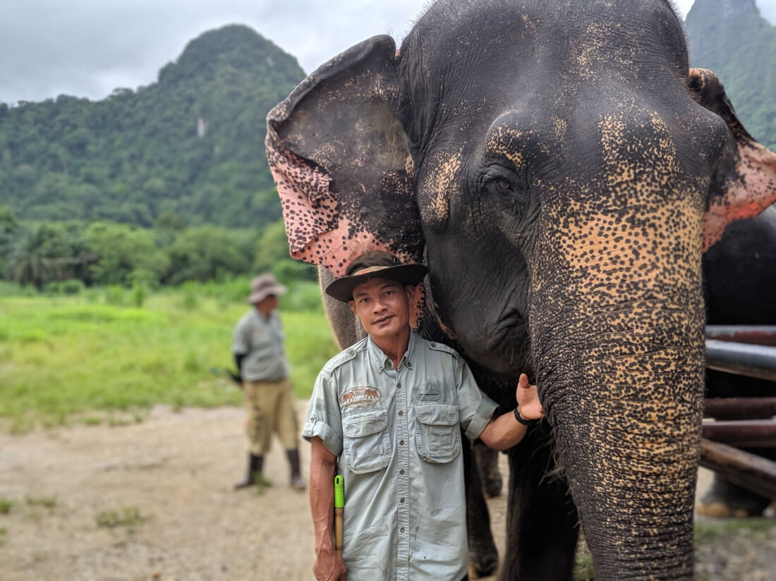 A man standing beside an elephant in Thailand