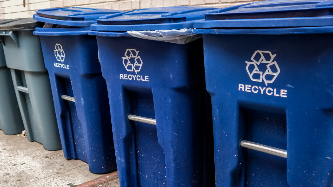 Row of blue recycling bins